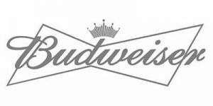 budweiser-structural-steel-erection